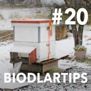 Biodlartips avsnitt 20 - Slätthonung
