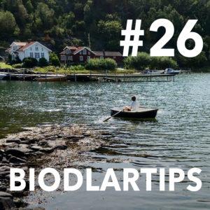 Biodlartips #26 - Flytta bin
